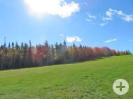 Cape Breton - Top-Lage am River Inhabitants - 30.350 m² großes Ufergrundstück