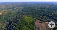 NOVA SCOTIA - 220 HEKTAR GROSSES  WALD-/JAGD-ARAEAL MIT EIGENER UFRERFRONT AM COUNTRY HARBOUR RIVER