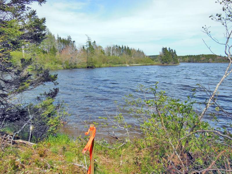 Cape Breton - Preisgünstiges Grundstücksareal mit 141.253 m² und eigener Uferfront am Mac Leods Lake