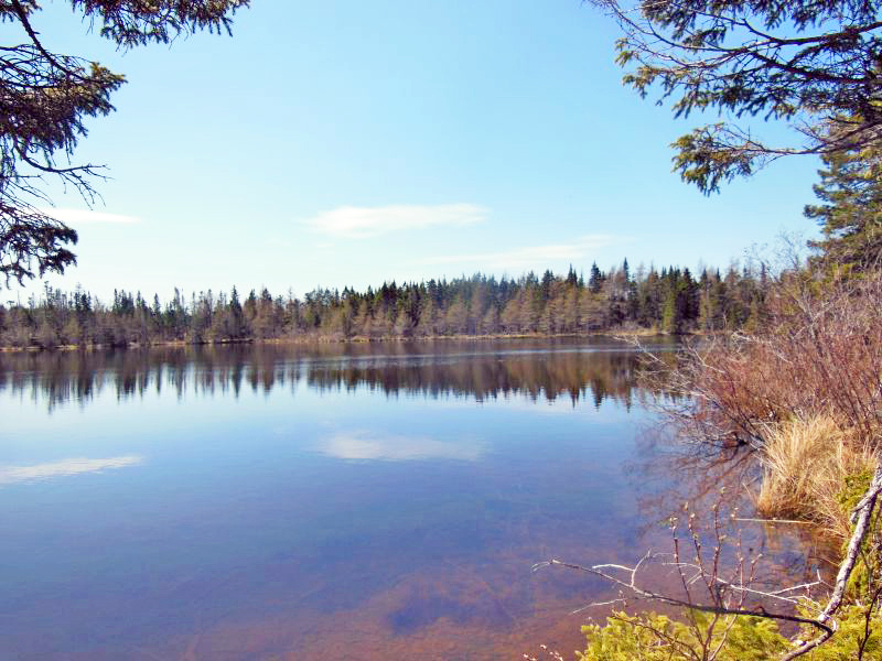Cape Breton - Soldiers Cove - Ufergrundstück mit 29.542 m² am MacLeods Lake - nahe  St. Peters und Bras d`Or Lake