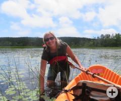 Seerosen-Ernte am Mitchell Lake
