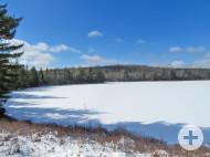 Nova Scotia - Guysborough - 11 Hektar großes Areal mit kleinem Cottage am See