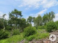 Nova Scotia - 46 Hektar großes Areal nahe einem wunderschönen Crownland-See - Zufaht und Baufläche bereits vorbereitet