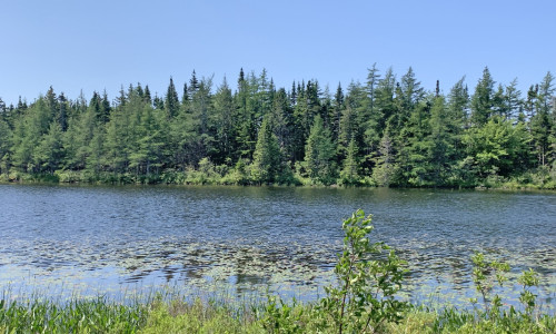 Cape Breton - Preisgünstiges See-Ufergrundstück mit rd. 29.542 m²