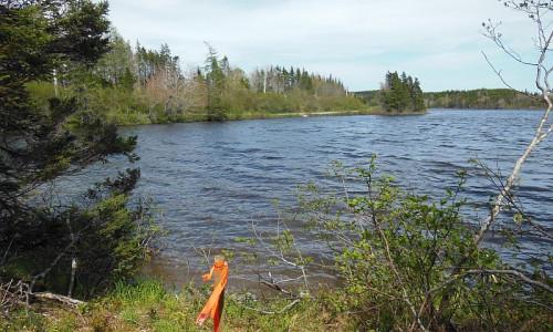 Cape Breton - Preiswertes - See-Ufergrundstück mit rd. 29.542 m²
