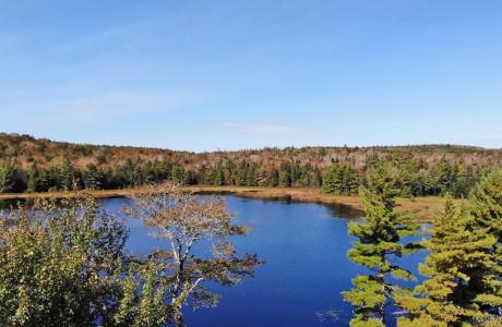Nova Scotia - 11,9 Hektar großes Grundstück am See mit kleinem Jagd-Cabin/Cottage