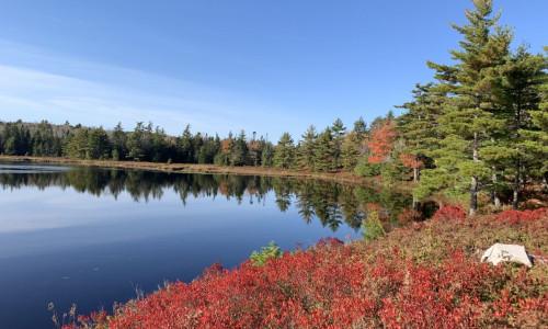 Nova Scotia - 11,9 Hektar mit kleinem Cottage in Alleinlage am See