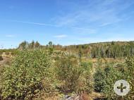 Nova Scotia - 47 Hektar großes Areal nahe einem wunderschönen Crownland-See