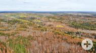 Nova Scotia - 11,9 Hektar großes Grundstücksareal mit kleinem Cottage und rd. 265 Meter eigener See-Uferfront!