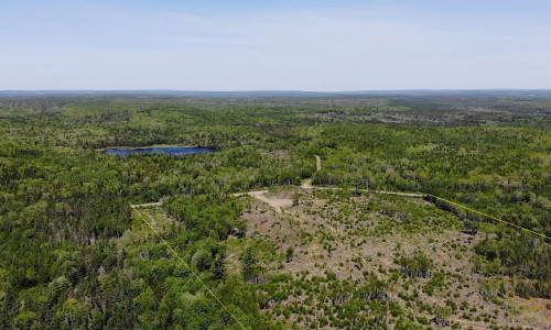 Nova Scotia - Preishit - 47 Hektar mit vorbereiteter Zufahrt/Baufläche inklusive neuer Vermessung!