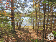 Nova Scotia - Herrliches Waldareal mit rd. 200 Hektar und Uferfront am Country Harbour River