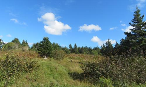 Cape Breton - Wunderschönes ehemaliges Farmgrundstück - inklusive Zugangsrecht zum Bras d`Or Lake