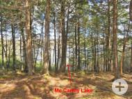 Nova Scotia - 47 Hektar mit vorbereiteter Zufahrt/Baufläche und schönem Bachlauf