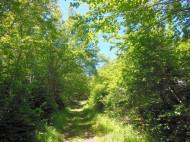 Nova Scotia - 37 Hektar großes Areal in traumhaft schöner Atlantik-Lage oberhalb bzw. direkt an der St. Mary´s Bay bei Long Island