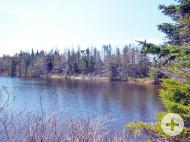 Cape Breton - Soldiers Cove - 29542 m² großes Ufergrundstück am MacLeods Lake - nahe St. Peters und Bras d`Or Lake